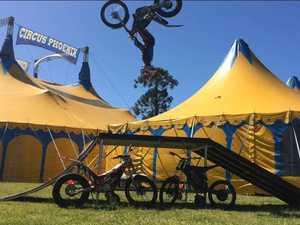 Circus Phoenix