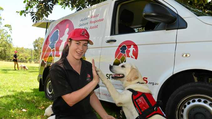 HIGH FIVE: Trainer Jane Borchardt with Kodi from Smart Pups, who have partnered with Play for Purpose to host a lottery that will help raise funds to train assistance dogs.