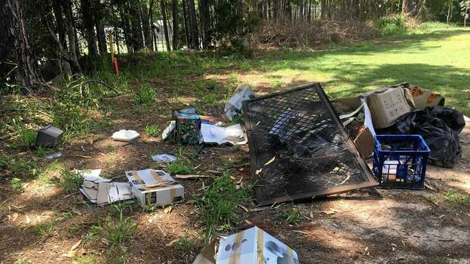 A disgusting pile of rubbish that included rotting fish and food was dumped behind Ballinger Park on New Year's Day.