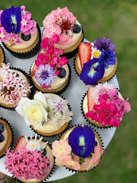 Cake Decorating Supplies Queensland