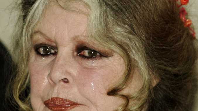 Brigitte Bardot, 1960s film star and animal rights activist, speaks at a news conference in Ottawa, Wednesday March 22, 2006. Bardot says Canada's seal hunt is a massacre that must stop. (AP Photo/CP,Fred Chartrand)