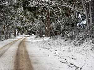 LET IT SNOW: White winter could hit Warwick this year