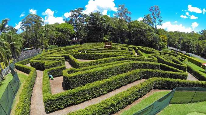 BELOVED ATTRACTION: Bellingham Maze.