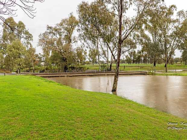 There is little chance of the Condamine River rising in the next week.  File photo: Steven Kasper