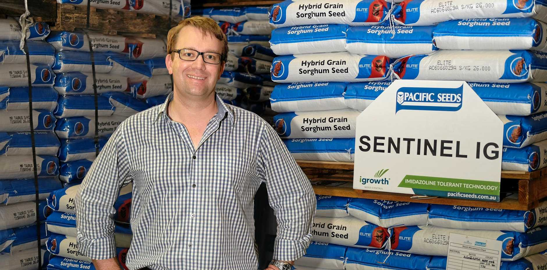 NEW TECHNOLOGY: Pacific Seeds' Andrew Short with new grain sorghum variety Sentinal IG.
