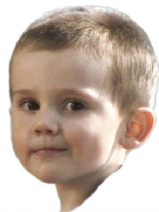 William Tyrrell is at the centre of one of Australia's most puzzling missing child cases.