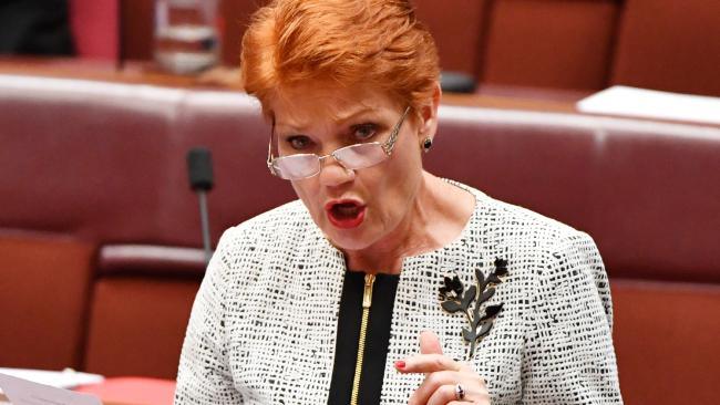 One Nation leader Pauline Hanson is hoping to dislodge Fraser Anning from the Senate. Picture: AAP