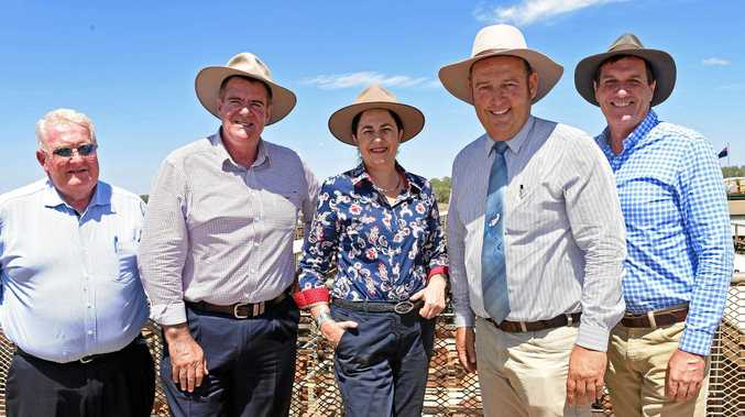 Cr Peter Flynn, Minister for Agricultural Industry Development Mark Furner, Premier Annastacia Palaszczuk, Maranoa mayor Tyson Golder and Minister for Natural Resources, Mines and Energy Anthony Lynham at the Roma saleyards today.