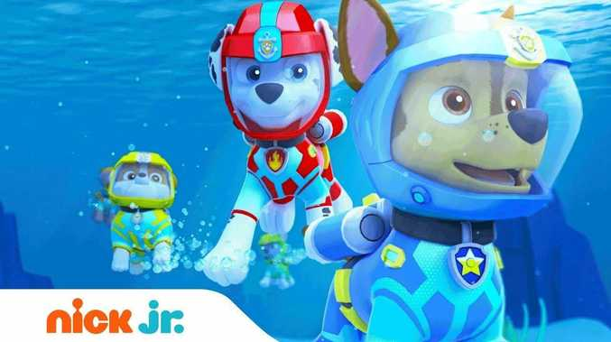 Children's film Paw patrol : Sea Patrol.