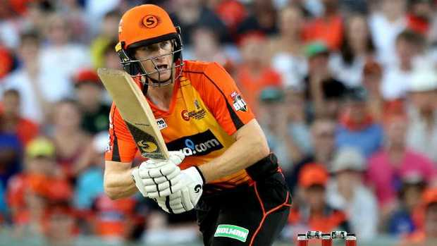 Adam Voges of the Scorchers plays a shot during the win against Adelaide Strikers.
