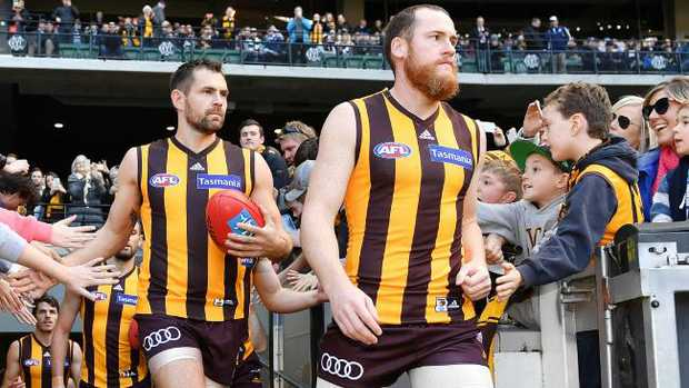 Luke Hodge and Jarryd Roughead lead Hawthorn onto the MCG. Picture: Jake Nowakowski