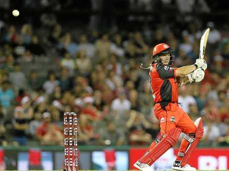Renegades batsman Brad Hodge has urged caution with expansion plans.