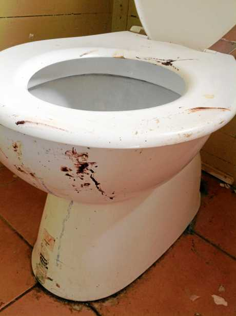 81 Mcintyre st Leyburn rental mess