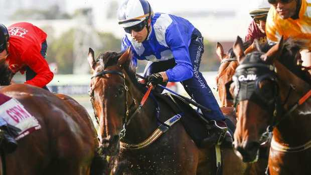 Hugh Bowman could miss the ride on Winx in the Apollo Stakes after being suspended in New Zealand on Saturday. Picture: Dylan Robinson