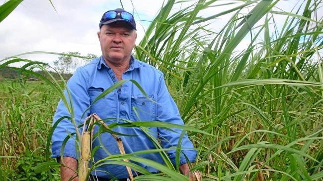Proserpine farmer Gary Simpson