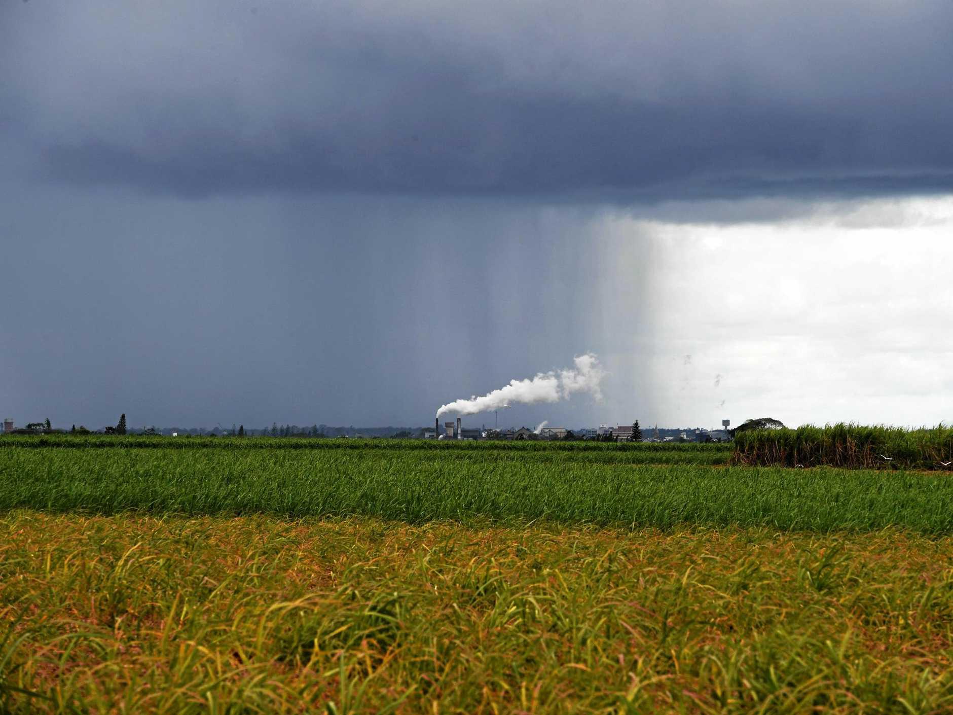 Rain showers over the Bundaberg region.
