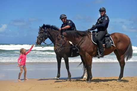 Sensible 7-year-old Isla Johnson was out of the rough surf, so got to meet Dave Masters with 'Manny' and Roy Mientjes with 'Arnie' from the Queensland Mounted Police, who were patrolling Maroochydore Beach.