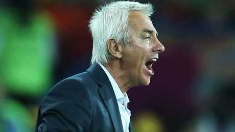 Bert van Marwijk's appointment has been lauded by Graham Arnold.