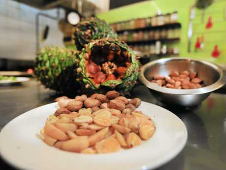 Bunya nuts ready to be used at New Leaf Cafe.