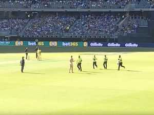 Streaker scenes revive fun take on cricket
