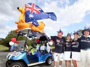 Horny kangaroo terrorising golfers