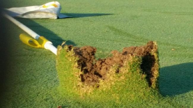 Kangaroo damage at Southport Golf Club. They provided the photo
