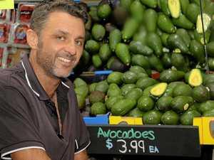 Harvest to smash avocado prices