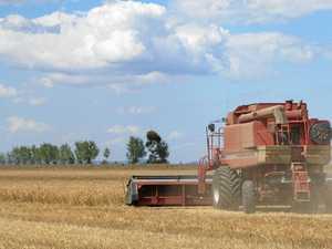 Quarter time for Australian grain exports