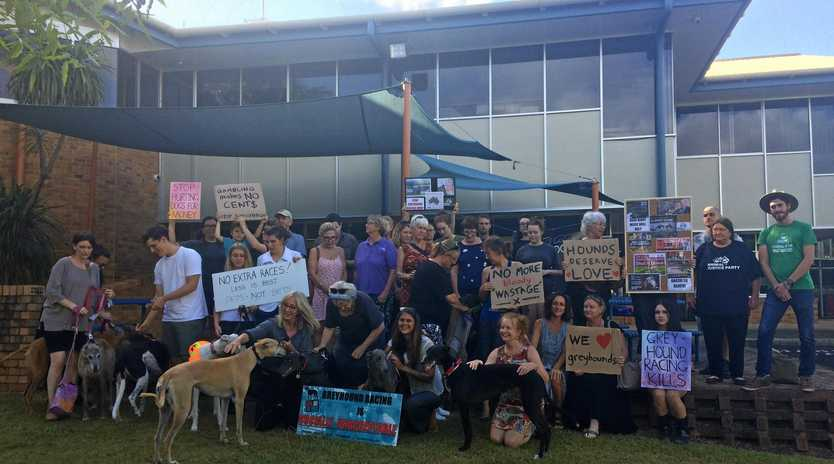 Animal activists gathered in front of Lismore City Council chambers advocating for a council move for additional greyhound races be reversed.
