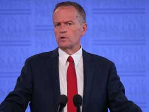 'Bill Shorten is no warrior'