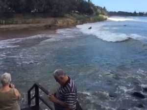 High tide crashes into region's coast