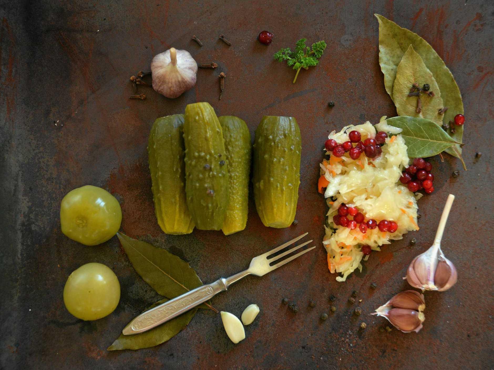 sauerkraut, cucumber pickles and yogurt - popular probiotic fermented food - three measuring cups against rustic wood