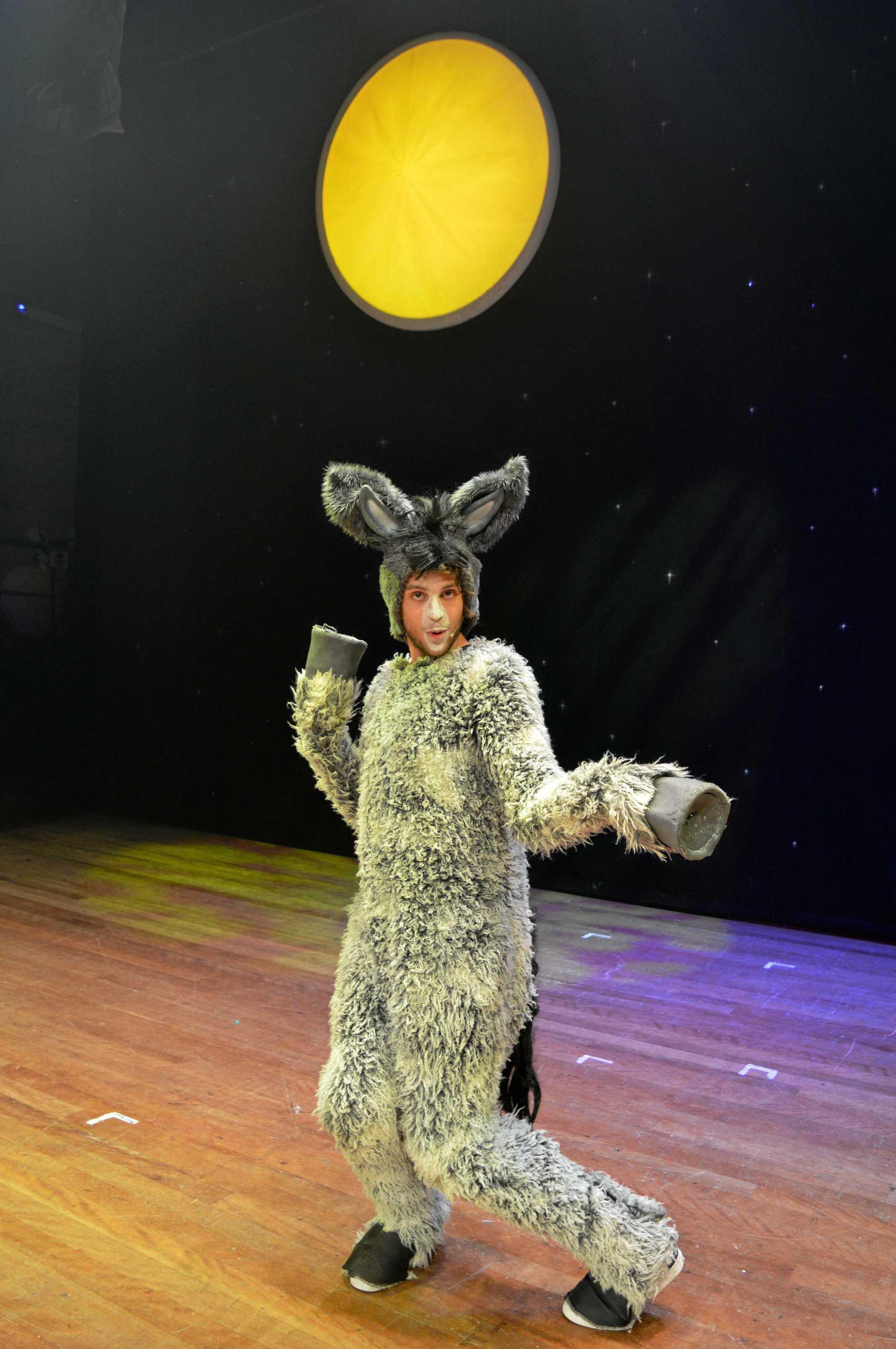 Hayden Capell as Donkey.