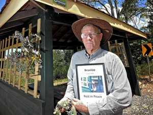 Slain koala remembered by community