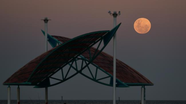 Super moon rises on the Strand, Townsville. Picture: Evan Morgan