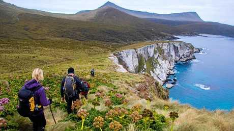 Trekking New Zealand's sub Antarctic islands.