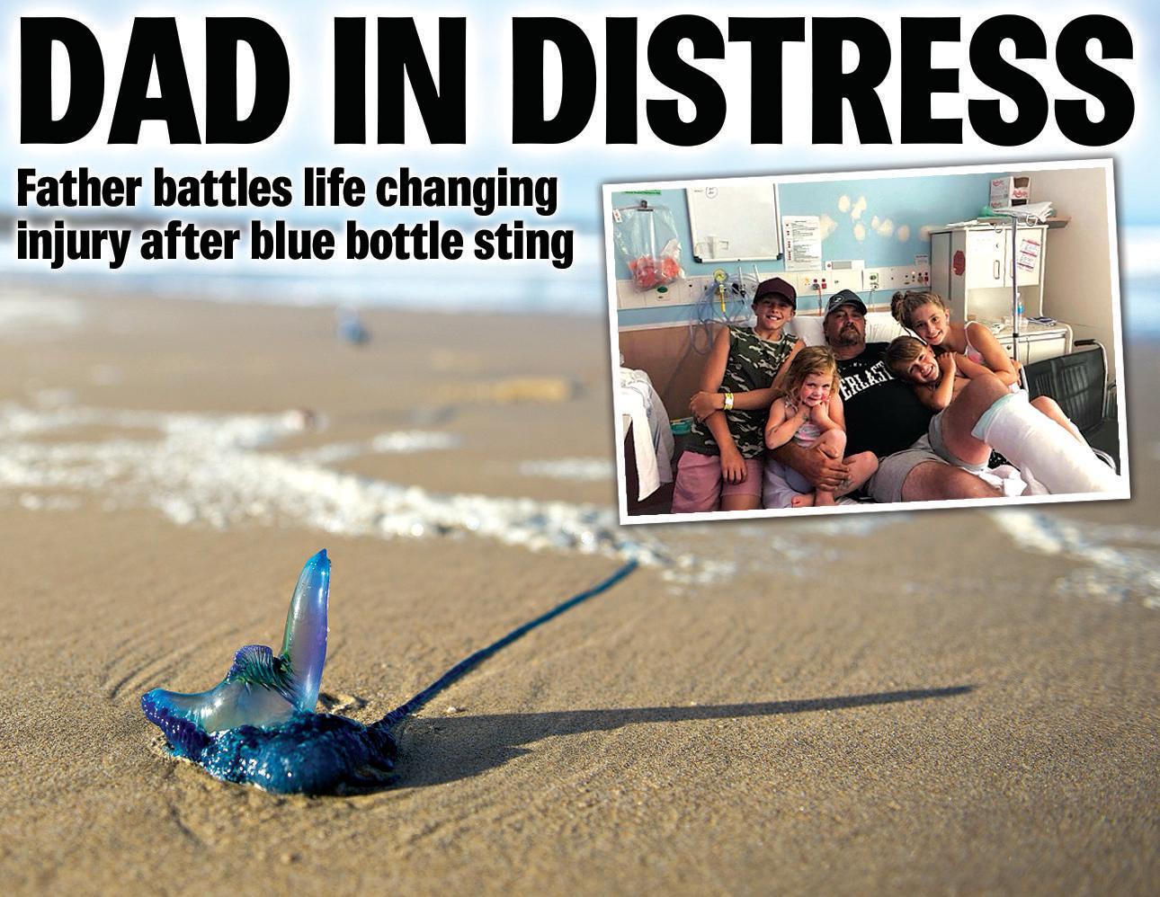 Marine bluebottle washed up on Emerald Beach.31 August 2014.Photo Trevor Veale / Coffs Coast Advocate