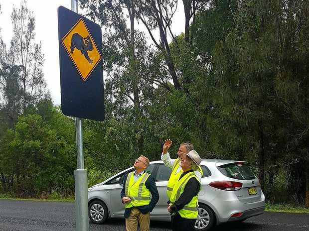 Nationals Parliamentary Secretary for Northern NSW Ben Franklin, Mayor of Ballina Council David Wright and Bob Higgins from Roads and Maritime Services viewing the new koala hot spot signs.