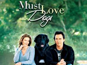 Dogs at the movies? Canines invited for week of films