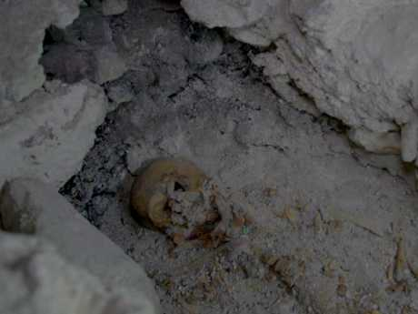 Queen skull found in royal tomb at the Peten jungle, Guatemala. Picture: Wild Blue Media.