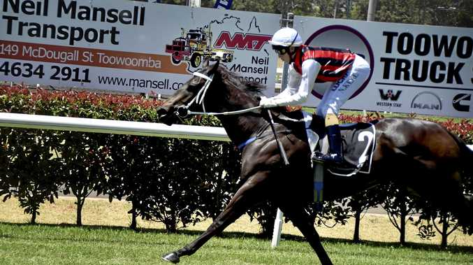 Multiple Clifford Park winner Mr Marbellouz is in line for his city debut at Doomben on Saturday.
