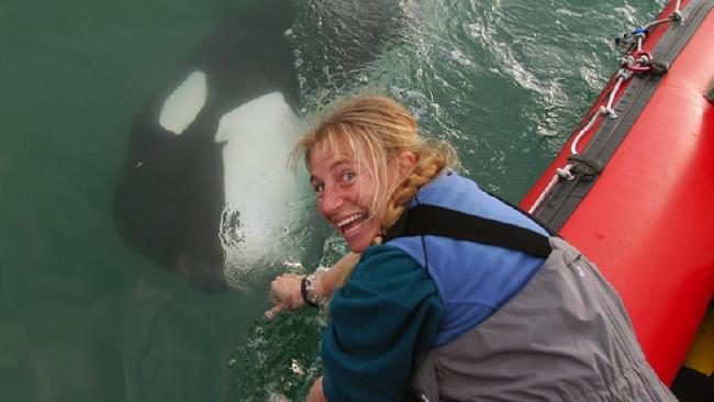 Dr Ingrid Visser is the Founder & Principal Scientist of the Orca Research Trust.