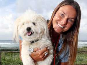 'My life as a pet euthanasia worker'