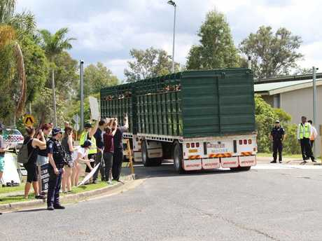 Members of the Brisbane Animal Save group stopped a truck at JBS at Dinmore.