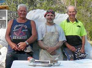 Murray cod sculpture to draw tourists to Warwick