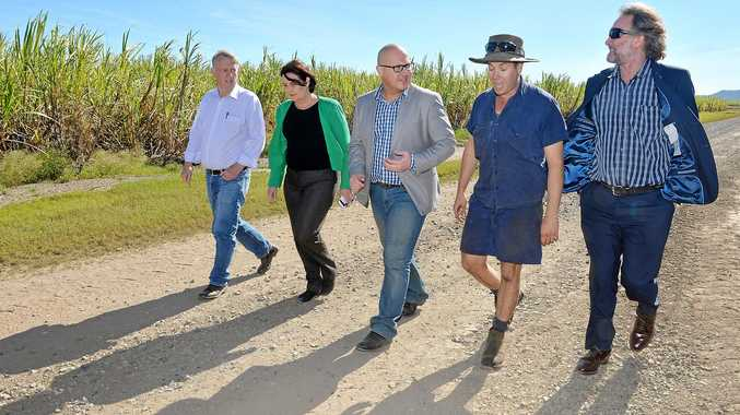 Member for Mirani Jim Pearce, Member for Mackay Julieanne Gilbert, Queensland Treasurer Curtis Pitt, farmer Phil Deguara and Bio Processing Australia executive director John Lockhart in the Mackay region.