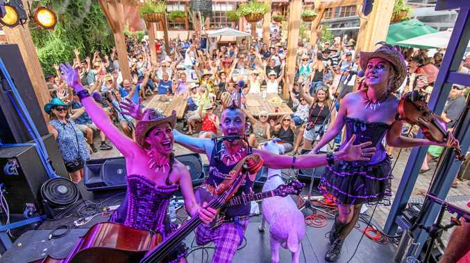 Hillbilly Goats are the ambassadors for the 2018 Airlie Beach Festival of Music.