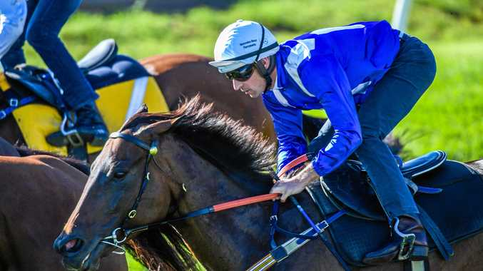Hugh Bowman rides Winx during a Barrier Trial at Rosehill.