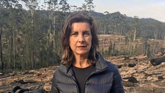 Greens MP Dawn Walker during a visit to Bellingen last year where she called for an end to Native Forest logging.