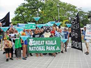 Protesters rally against forest agreement 'sham'